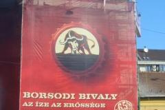 borsodi-06